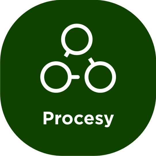 enova365 Procesy
